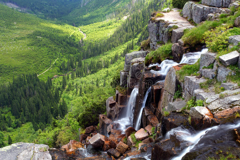 древесины водопада krkonose s elbe стоковые изображения rf