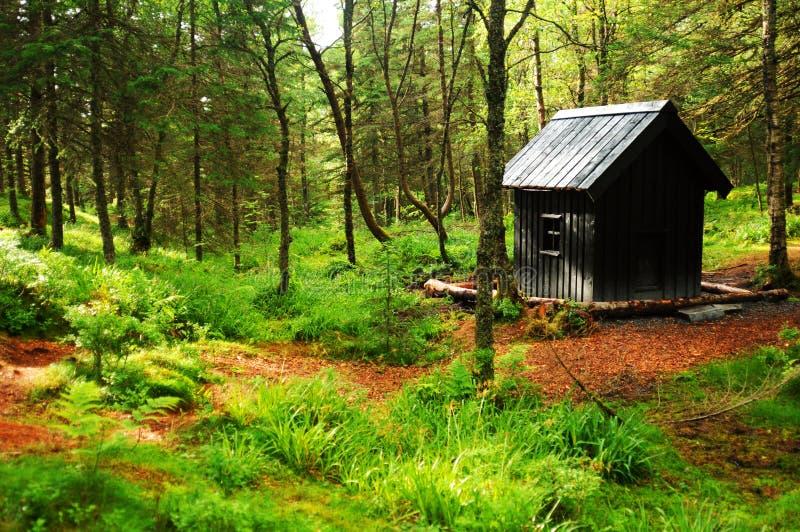 древесины кабины стоковые фотографии rf