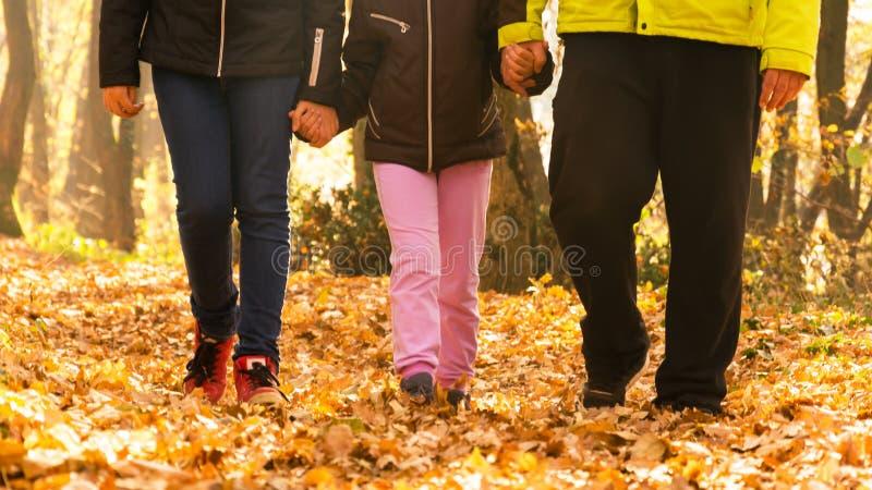 древесины семьи гуляя Отец и более старая дочь держа молодую дочь рукой стоковые изображения