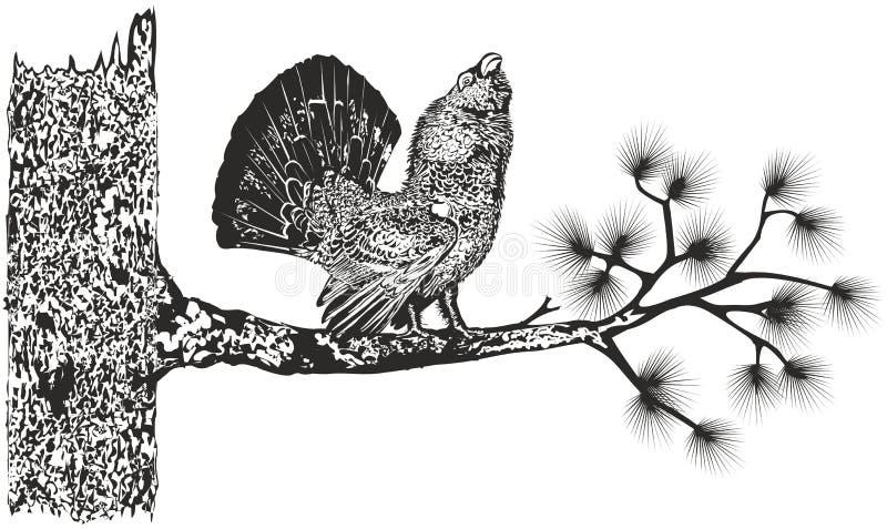 Древесин-тетеревиные на дереве бесплатная иллюстрация