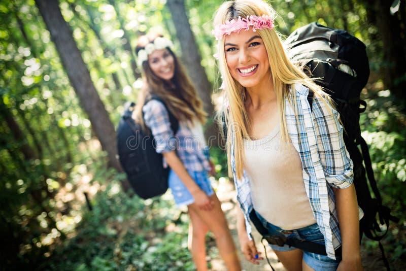 Друзья женщин Hiker с рюкзаком идя на путь в лесе лета стоковая фотография