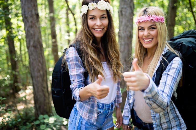Друзья женщин Hiker с рюкзаком идя на путь в лесе лета стоковые изображения