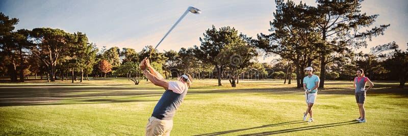 Друзья играя гольф на поле стоковые изображения rf