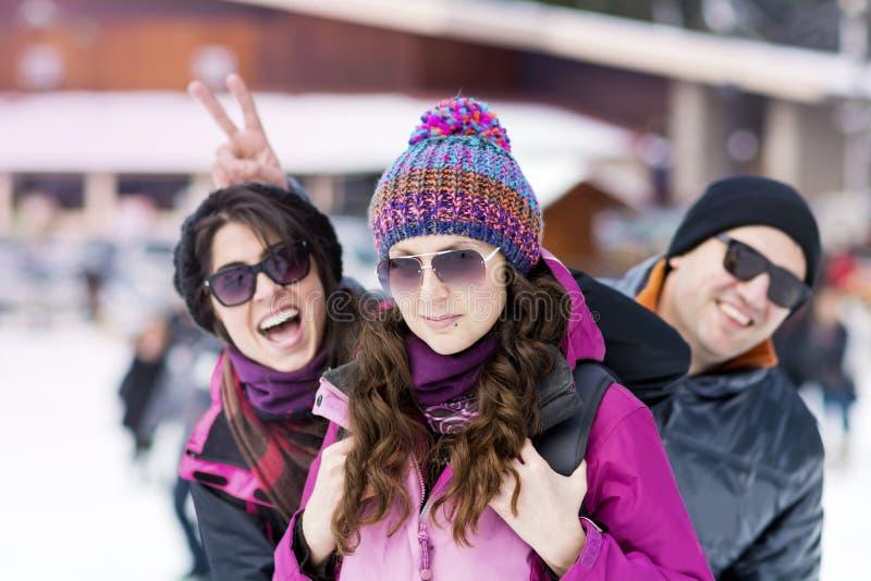 Друзья имея потеху в горе зимы управлять зимой розвальней потехи стоковые фотографии rf