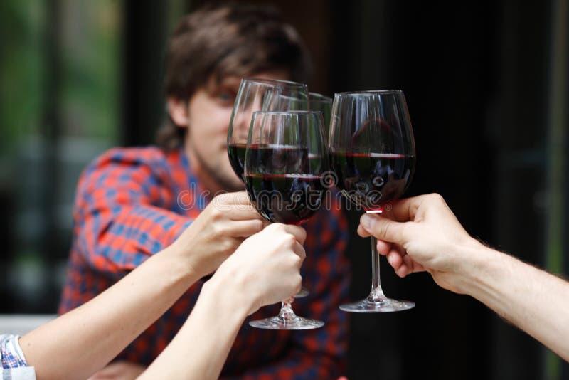 Друзья провозглашать с вином стоковые изображения