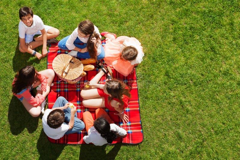 Друзья сидя около корзины пикника на зеленом луге стоковая фотография rf