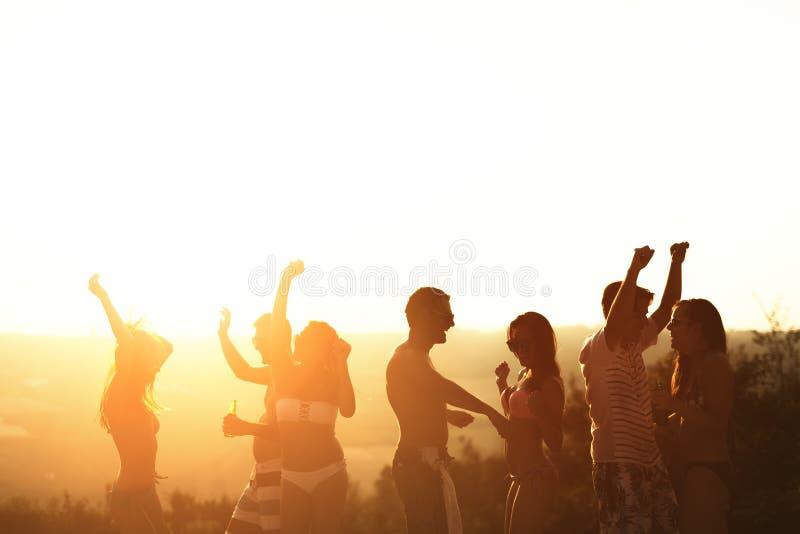 Друзья partying во время летних каникулов стоковые изображения