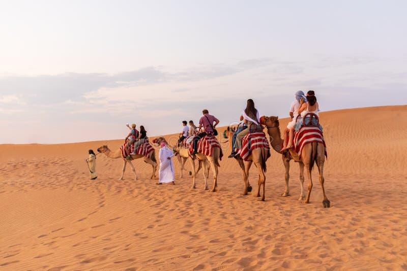 ДУБАЙ, ОАЭ - 9-ое ноября 2018: Караван верблюда с туристами идя через песчанные дюны в пустыне Дубай стоковые фото