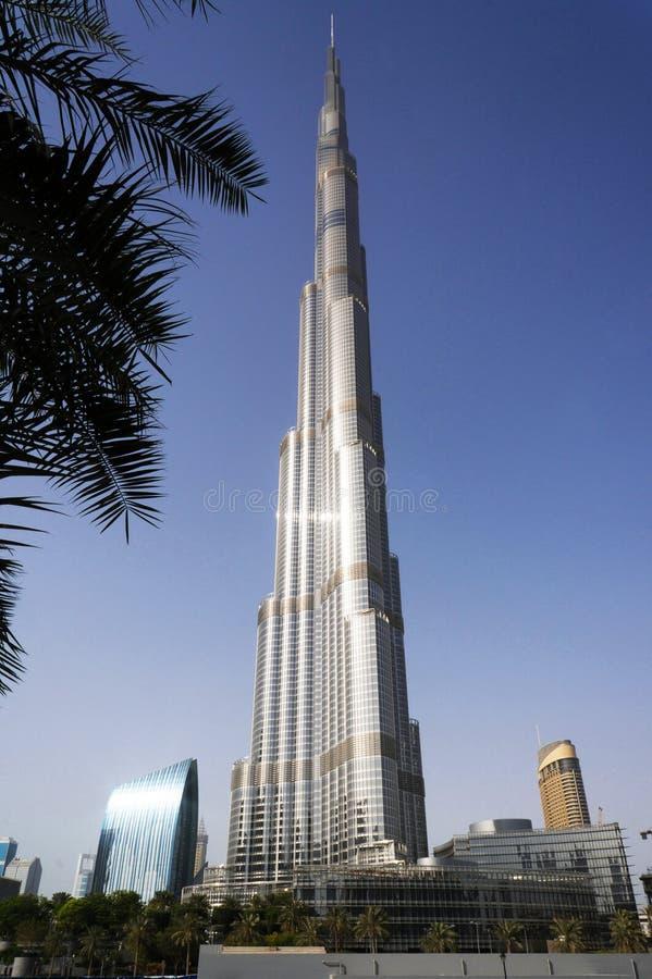 Дубай, ОАЭ - 15-ое января 2016: Башня Burj Khalifa Небоскреб Burj Khalifa против пальм в центре Дубай стоковое фото