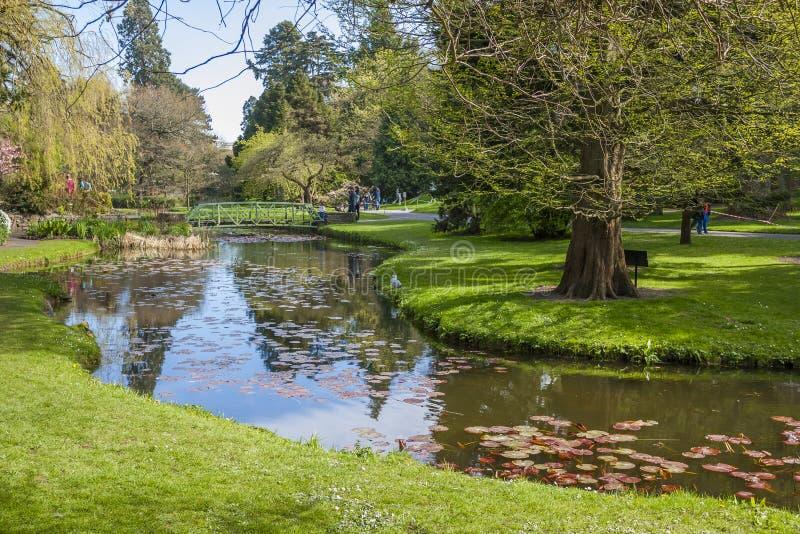 Дублин, Ирландия - 19-ое апреля: Красивое озеро в соотечественнике ботаническом стоковые фото