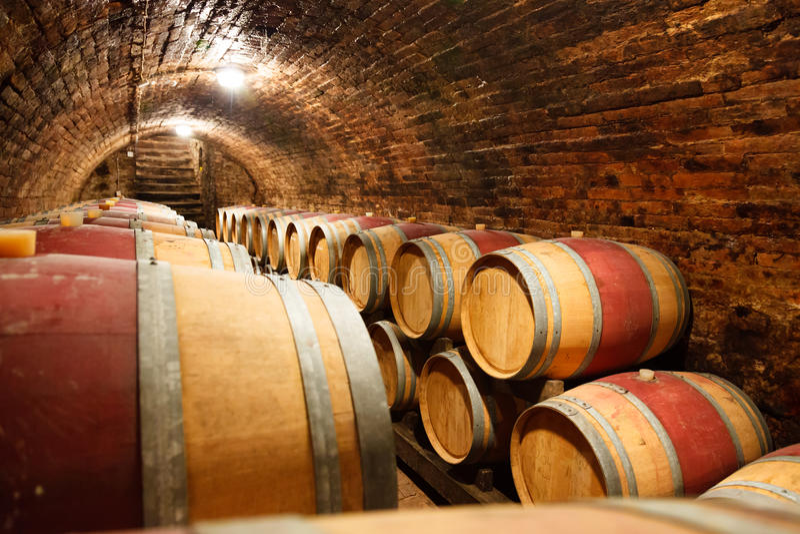 Дуб несется подземный винный погреб стоковая фотография rf