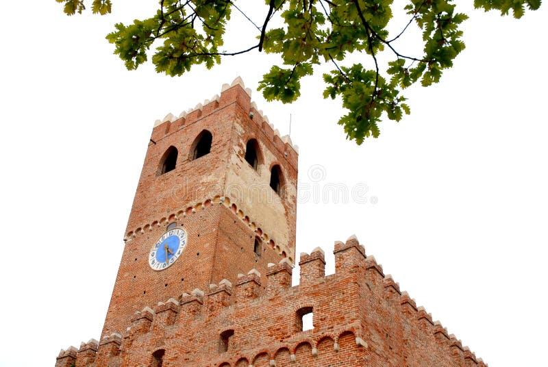 Дуб с башней с часами стоковое изображение