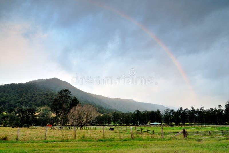 Дуга радуги над горой хинтерланда Gold Coast стоковое изображение rf