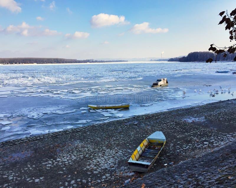 Дунай захватил айсбергами стоковое фото rf