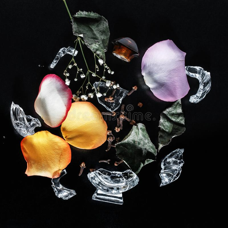 Духи установили на черную предпосылку с цветками стоковые фото