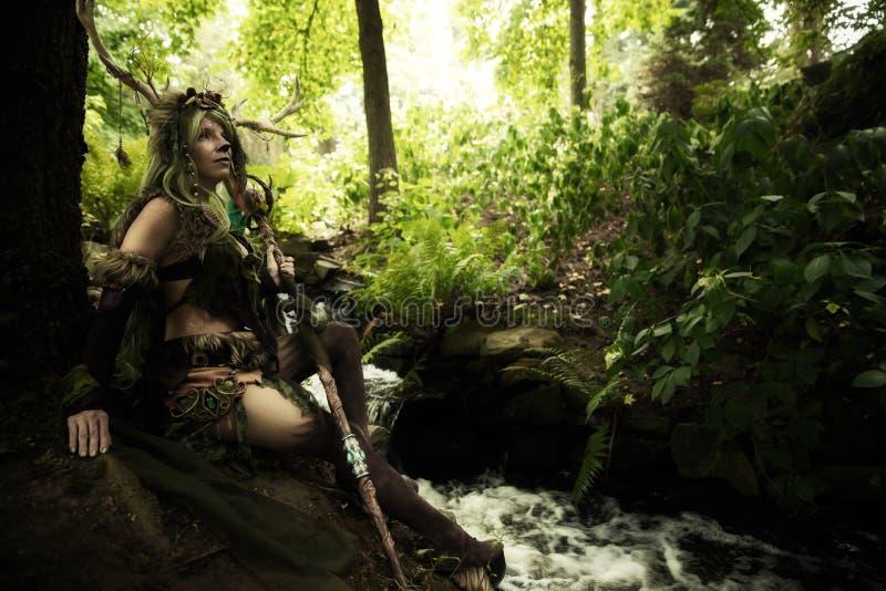 Дух леса внутри леса стоковое изображение