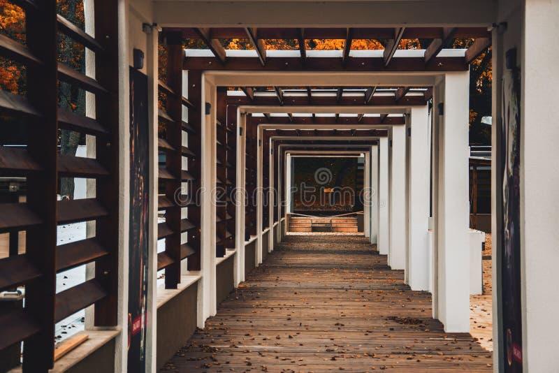 Дух осени стоковая фотография rf