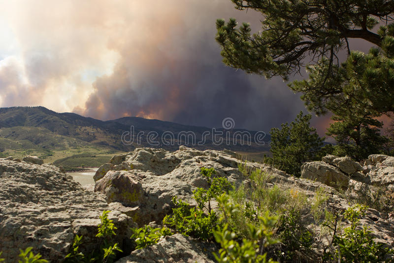 Дым от лесного пожара. стоковое изображение rf