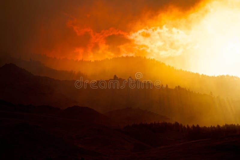Дым покрыл холмы и лесной пожар стоковое фото rf