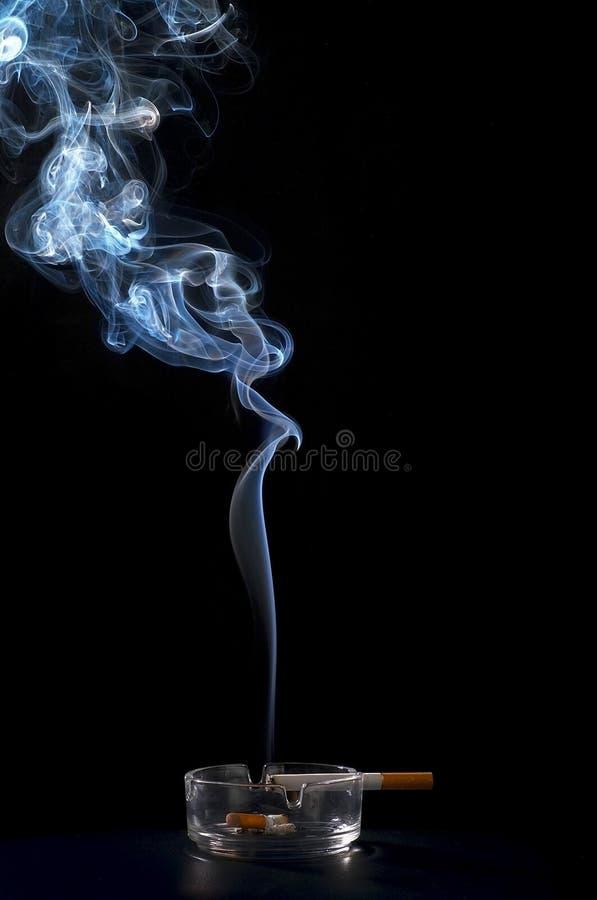 дым сигарет стоковое изображение rf