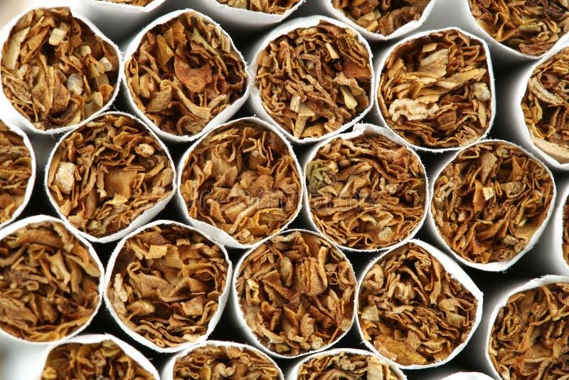 дым 20 сигарет стоковая фотография