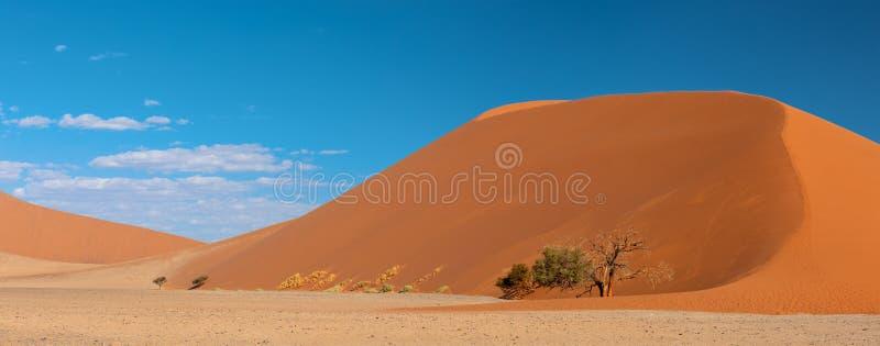 Дюна 45 в Sossusvlei, пустыне Намибии стоковые фото