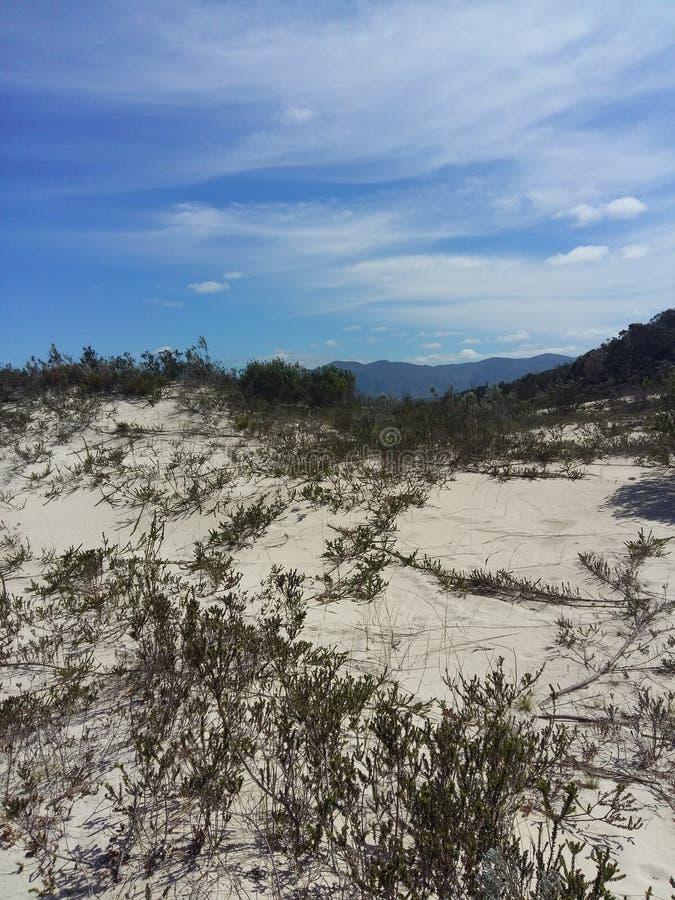 Дюна горы стоковая фотография