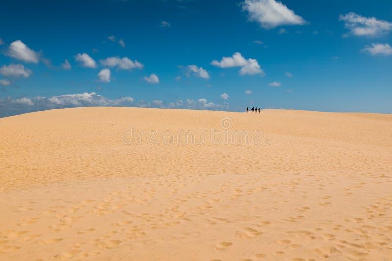 Дюна Pilat - большая песчанная дюна, залив Arcachon, Аквитания, Франция, Атлантический океан стоковые изображения rf
