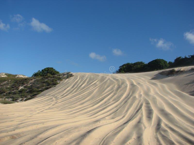 Дюны и пустыня в натальном, RN, Бразилия стоковые фото