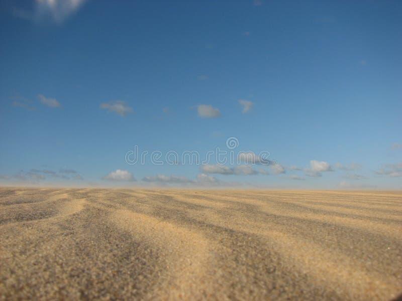 Дюны и пустыня в натальном, RN, Бразилия стоковое фото rf