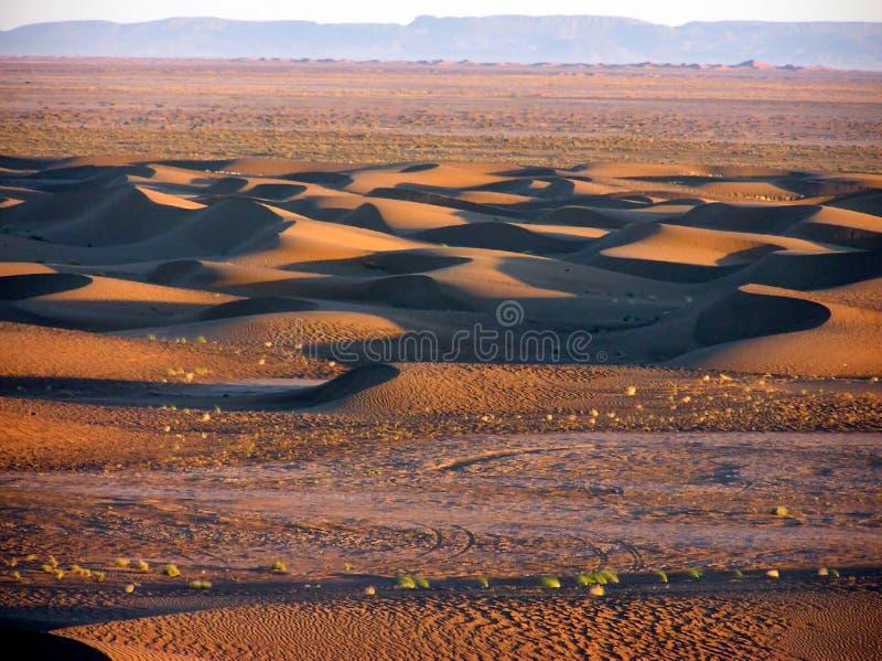 дюны Сахара пустыни chegaga стоковое фото rf