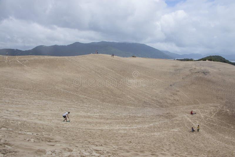 Дюны Joaquina - Florianópolis/SC - Бразилия стоковая фотография rf