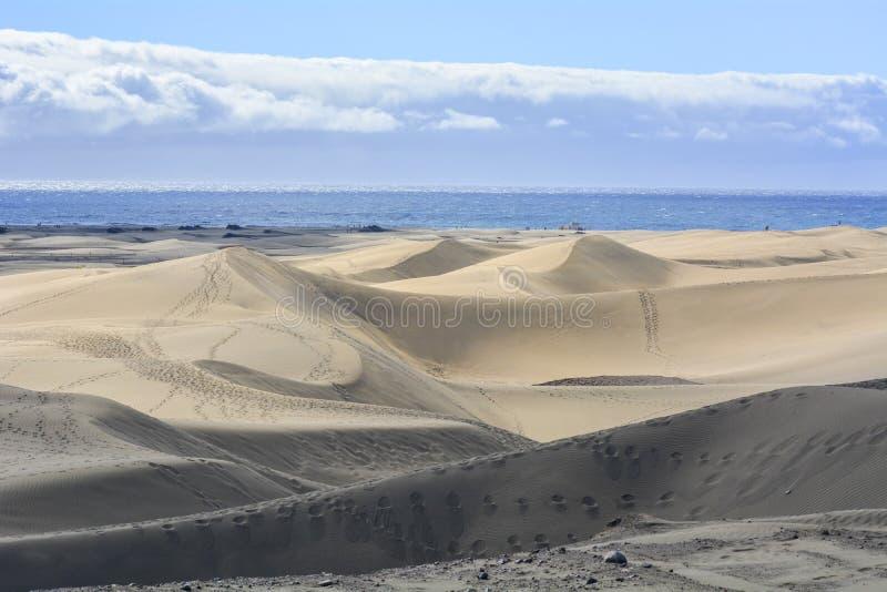 Дюны Maspalomas в Gran Canaria, Испании стоковое изображение rf