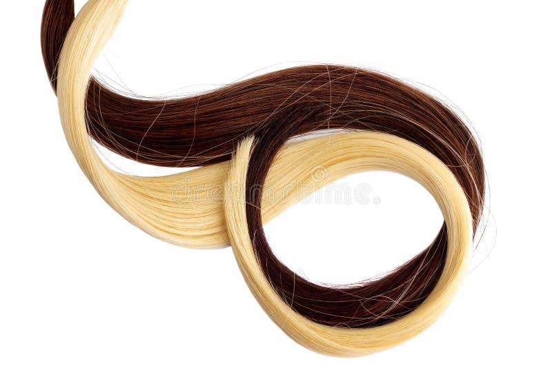 Длинное белокурое и коричневое расширение волос стоковое фото rf
