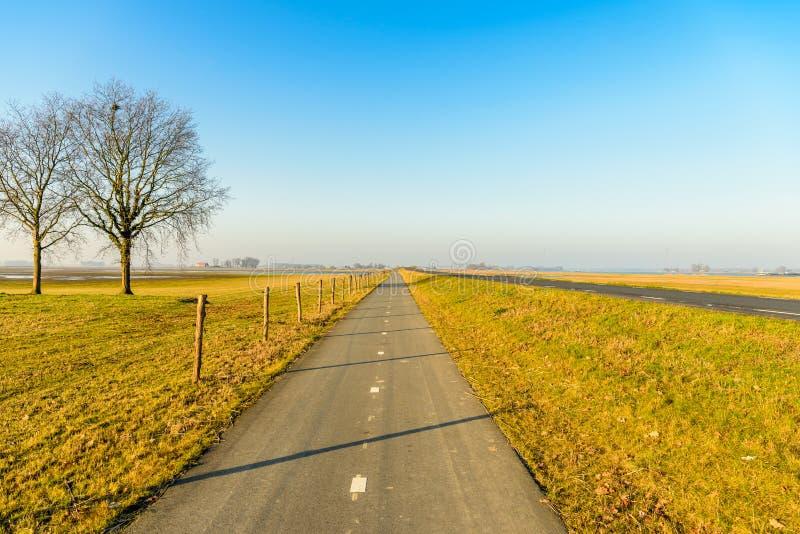 Длиной прямо велосипед путь в голландском ландшафте польдера стоковые изображения rf