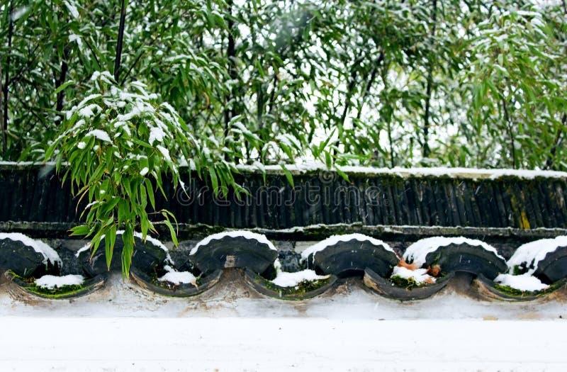 Д-р Сад Сунь Ятсен классический китайский в зиме стоковая фотография