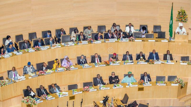 Д-р Nkosazana Dlamini-Zuma поставляет речь стоковая фотография rf