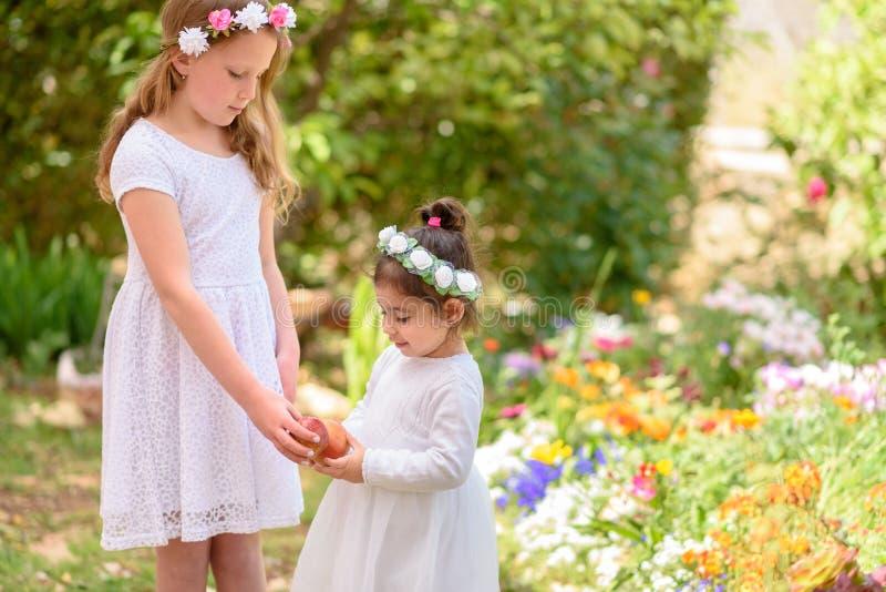 Еврейский праздник Shavuot и Rosh Hashanah 2 маленькой девочки держат красное яблоко на руках на красивой предпосылке сада стоковое фото rf