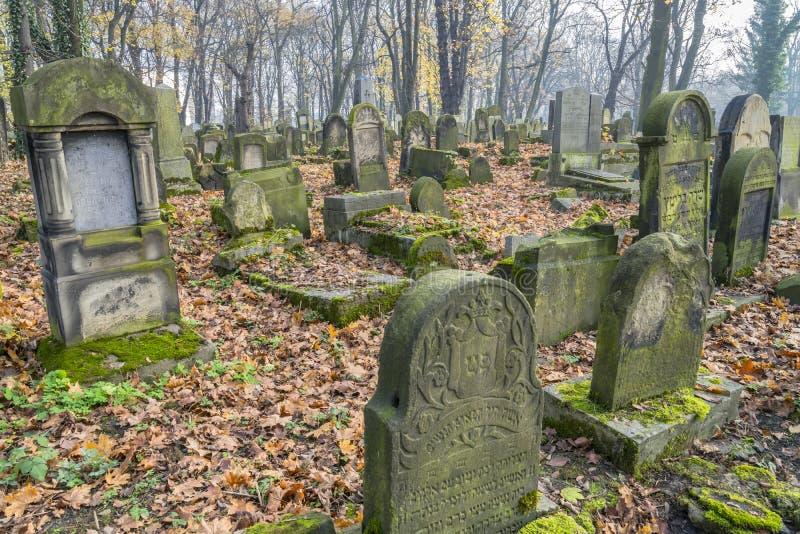 Еврейское кладбище стоковое изображение rf