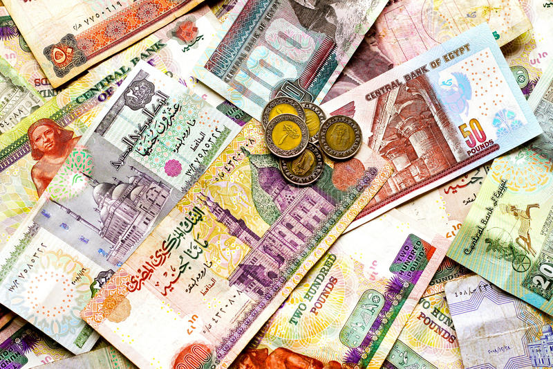 египетские фунты стоковые фотографии rf