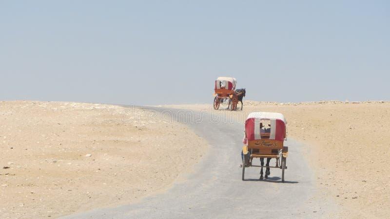 Египетский обзор экипажей стоковая фотография rf