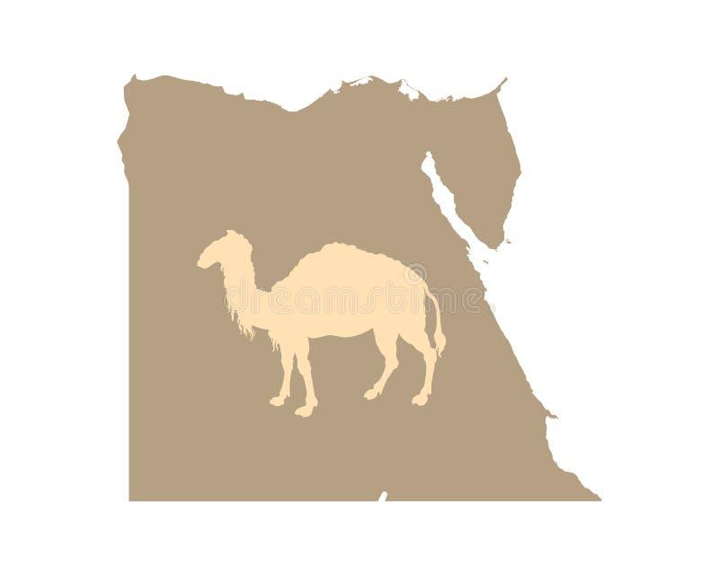 Египет и верблюд на белизне иллюстрация вектора