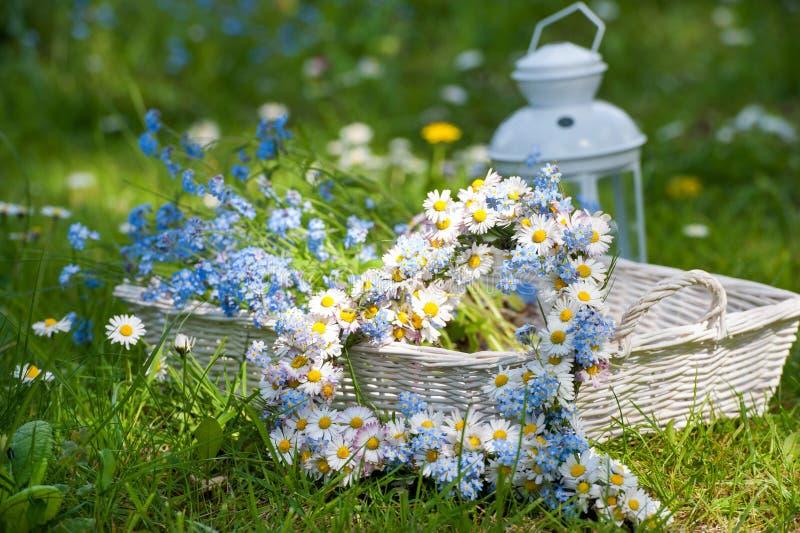 легко редактируйте сердце цветка к стоковая фотография rf