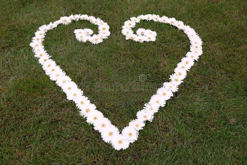 легко редактируйте сердце цветка к стоковая фотография
