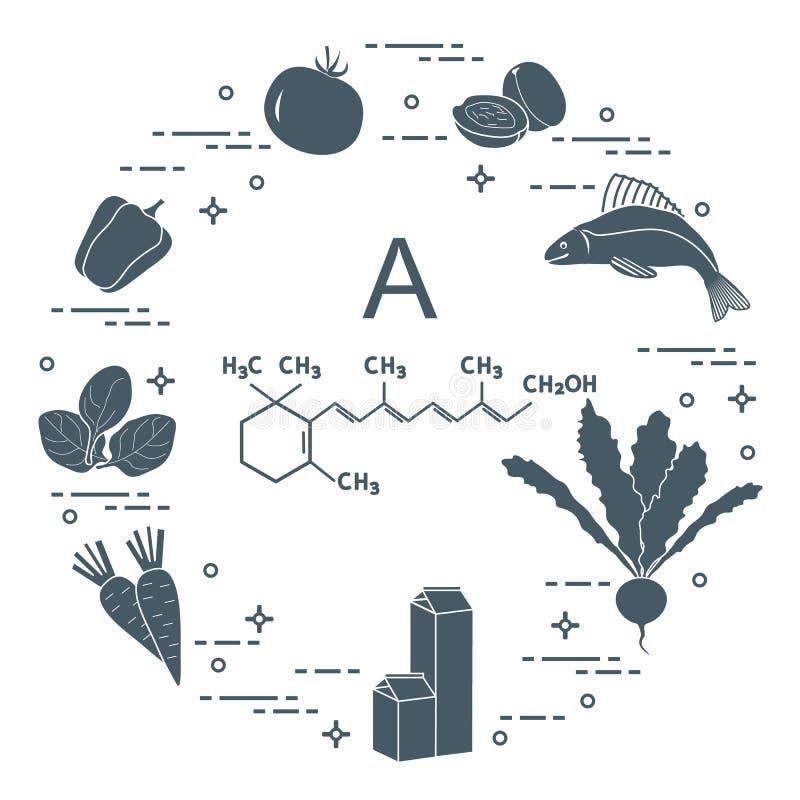 Еда богатая в Витамине A иллюстрация штока