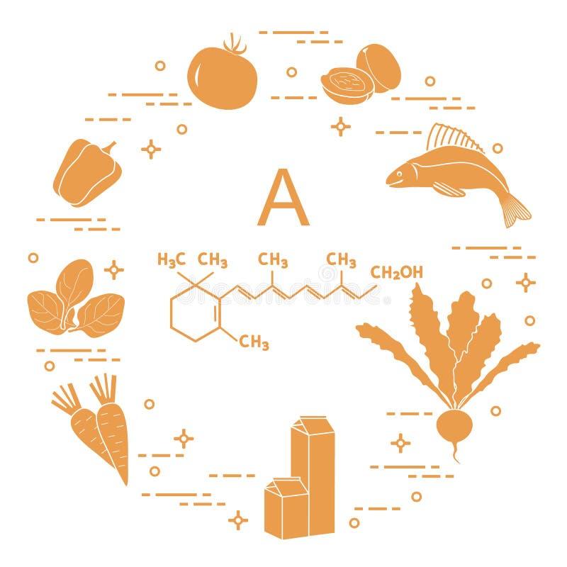 Еда богатая в Витамине A иллюстрация вектора