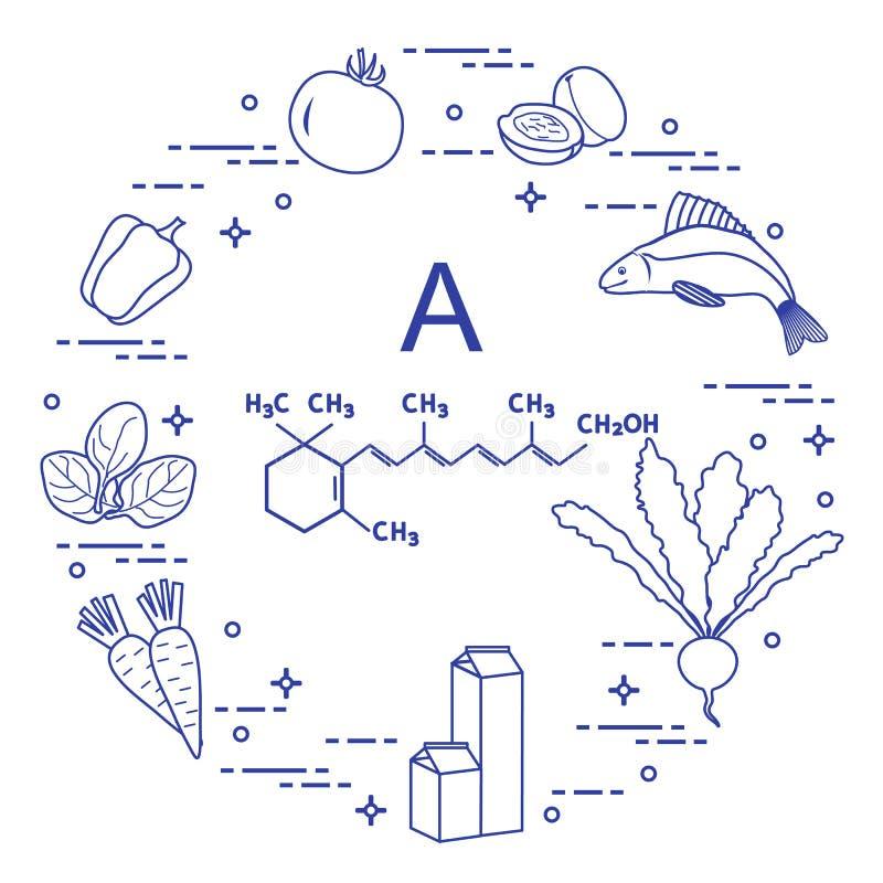 Еда богатая в Витамине A бесплатная иллюстрация