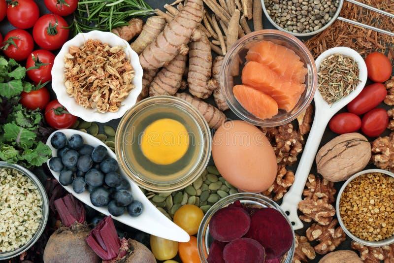 Еда для того чтобы повысить научный коллектив стоковые изображения