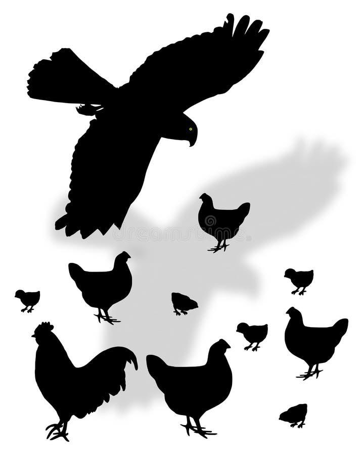 еда птицы смотря prey иллюстрация штока