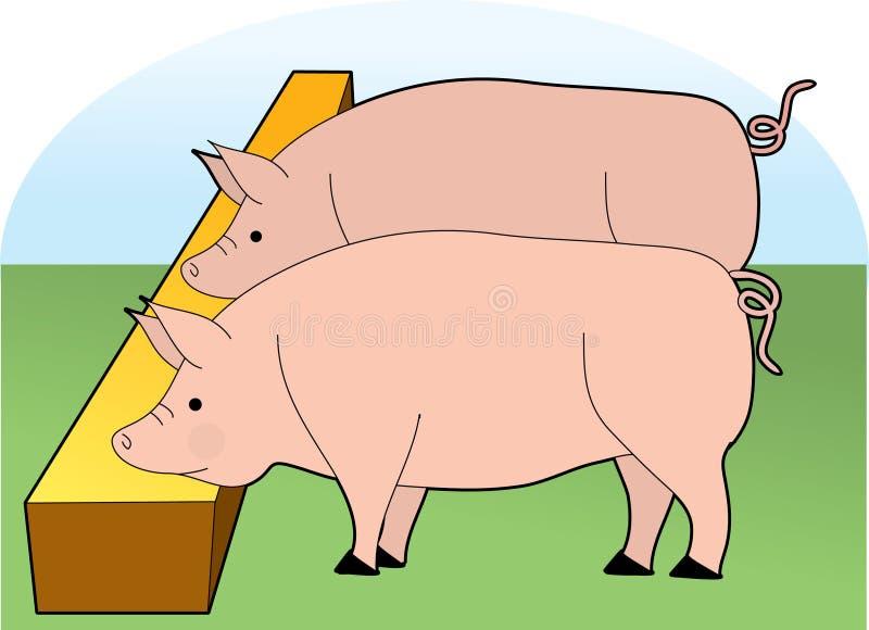 еда свиней иллюстрация штока